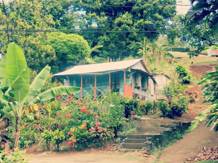 Dominica March 2013 036