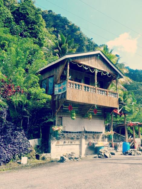 Dominica March 2013 076