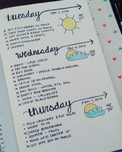 bulletjournallayoutideas19